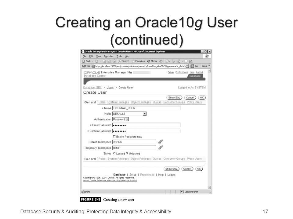 Database Security & Auditing: Protecting Data Integrity & Accessibility17 Creating an Oracle10g User (continued)