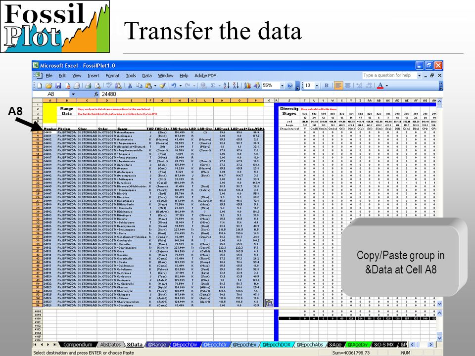 Speciation Transfer the data Copy/Paste group in &Data at Cell A8 A8