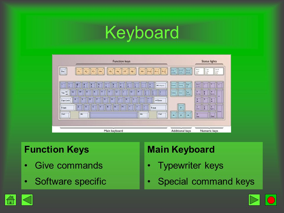 Keyboard Traditional –Looks like typewriter with extra keys Non-traditional –Fast food restaurants –Each key represents a food item rather than a character
