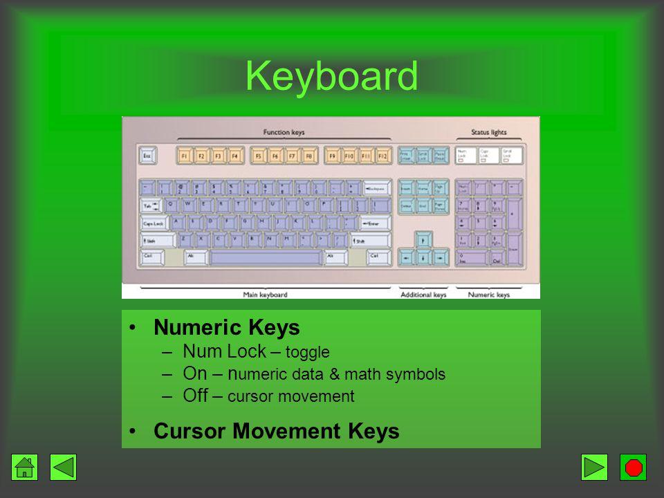 Keyboard Function Keys Give commands Software specific Main Keyboard Typewriter keys Special command keys