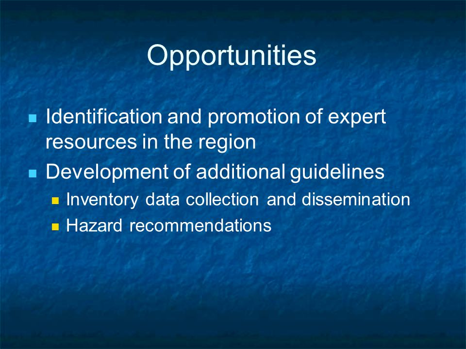 Opportunities Identification and promotion of expert resources in the region Development of additional guidelines Inventory data collection and dissemination Hazard recommendations