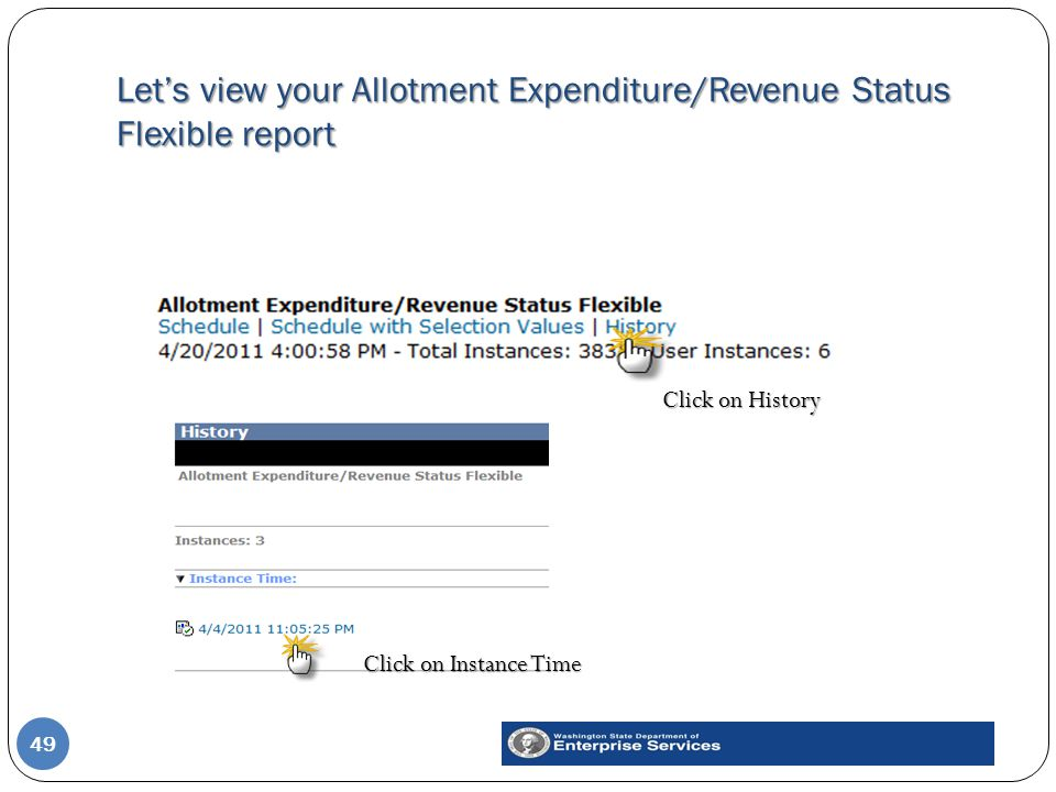 Let's view your Allotment Expenditure/Revenue Status Flexible report 49 Click on Instance Time Click on History