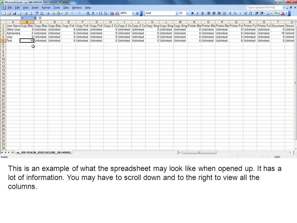 This is an example of what the spreadsheet may look like when opened up.