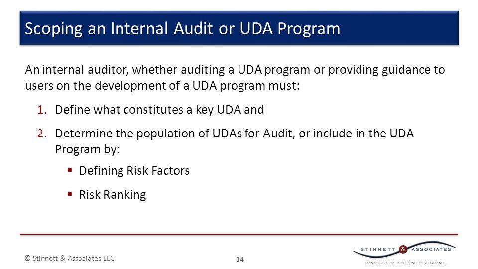 MANAGING RISK. IMPROVING PERFORMANCE. © Stinnett & Associates LLC 14 Scoping an Internal Audit or UDA Program An internal auditor, whether auditing a