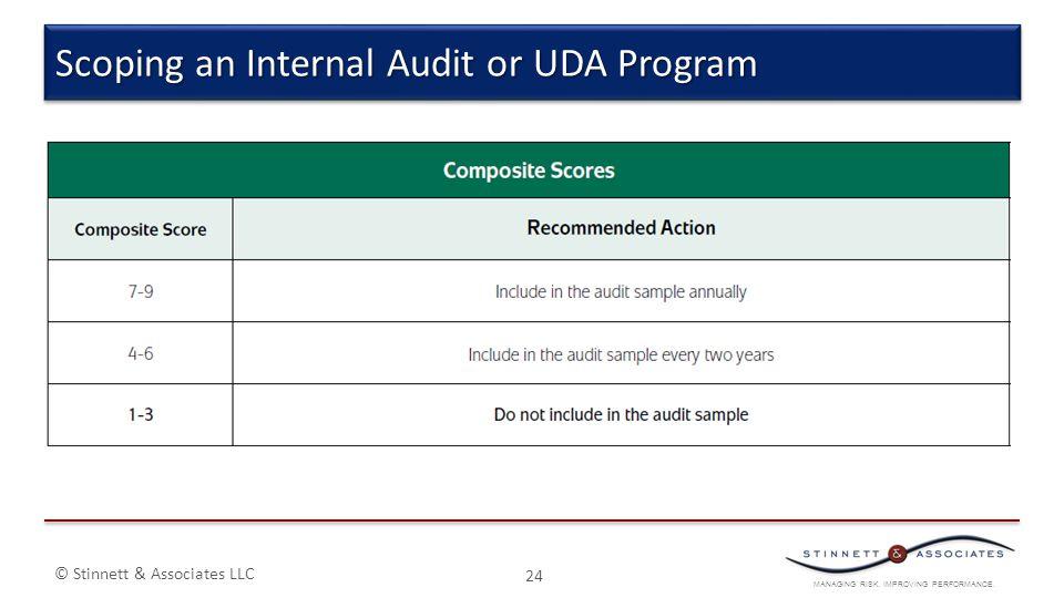 MANAGING RISK. IMPROVING PERFORMANCE. © Stinnett & Associates LLC 24 Scoping an Internal Audit or UDA Program