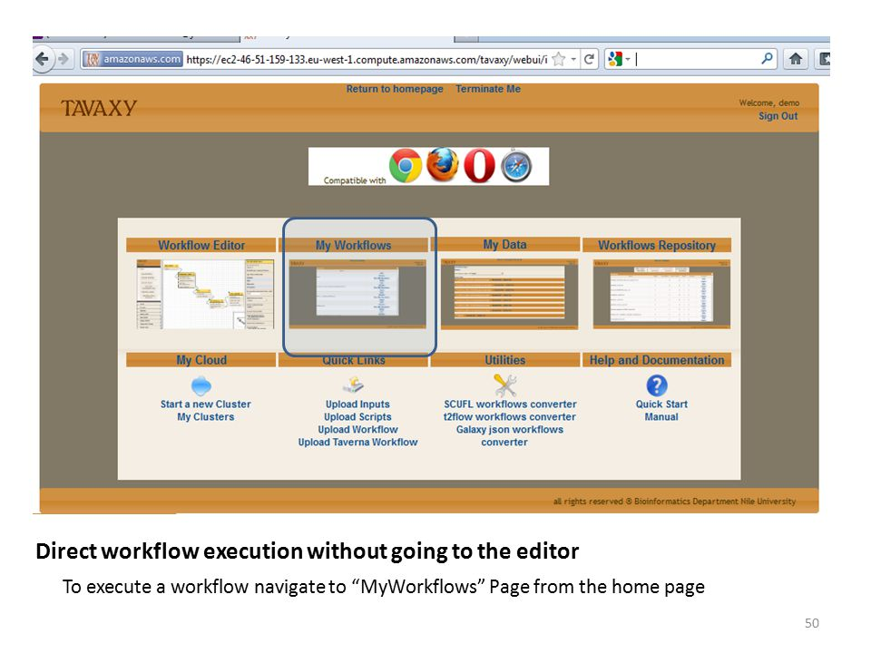 """To execute a workflow navigate to """"MyWorkflows"""" Page from the home page Direct workflow execution without going to the editor 50"""
