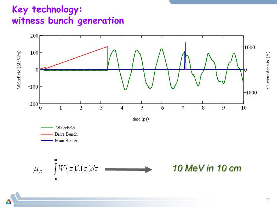 10 MeV in 10 cm Key technology: witness bunch generation 17