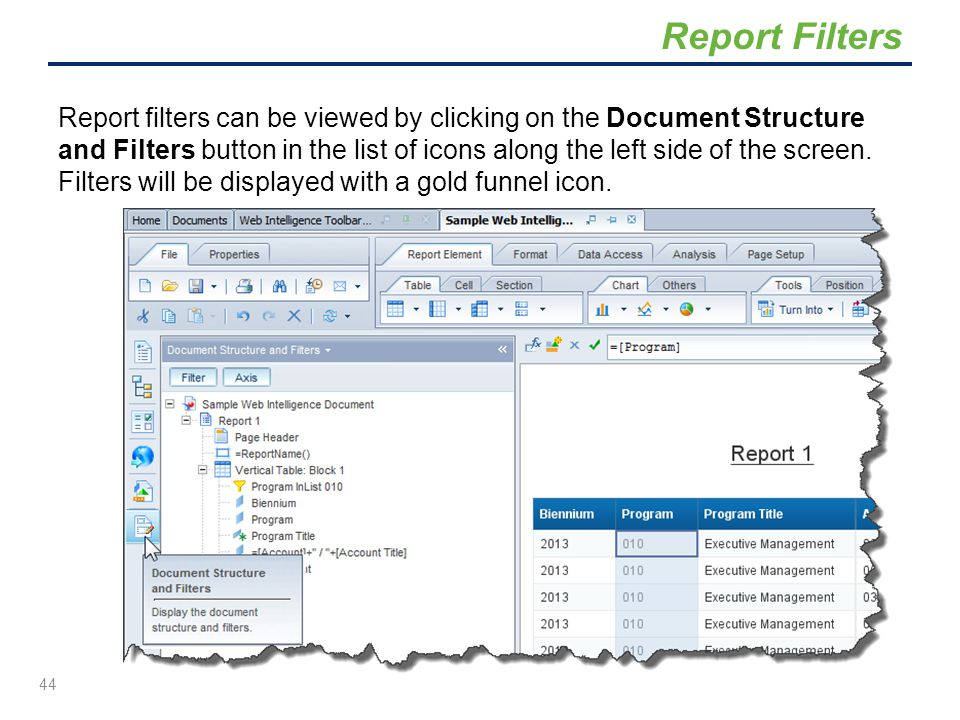 Report filters can be viewed by clicking on the Document Structure and Filters button in the list of icons along the left side of the screen. Filters