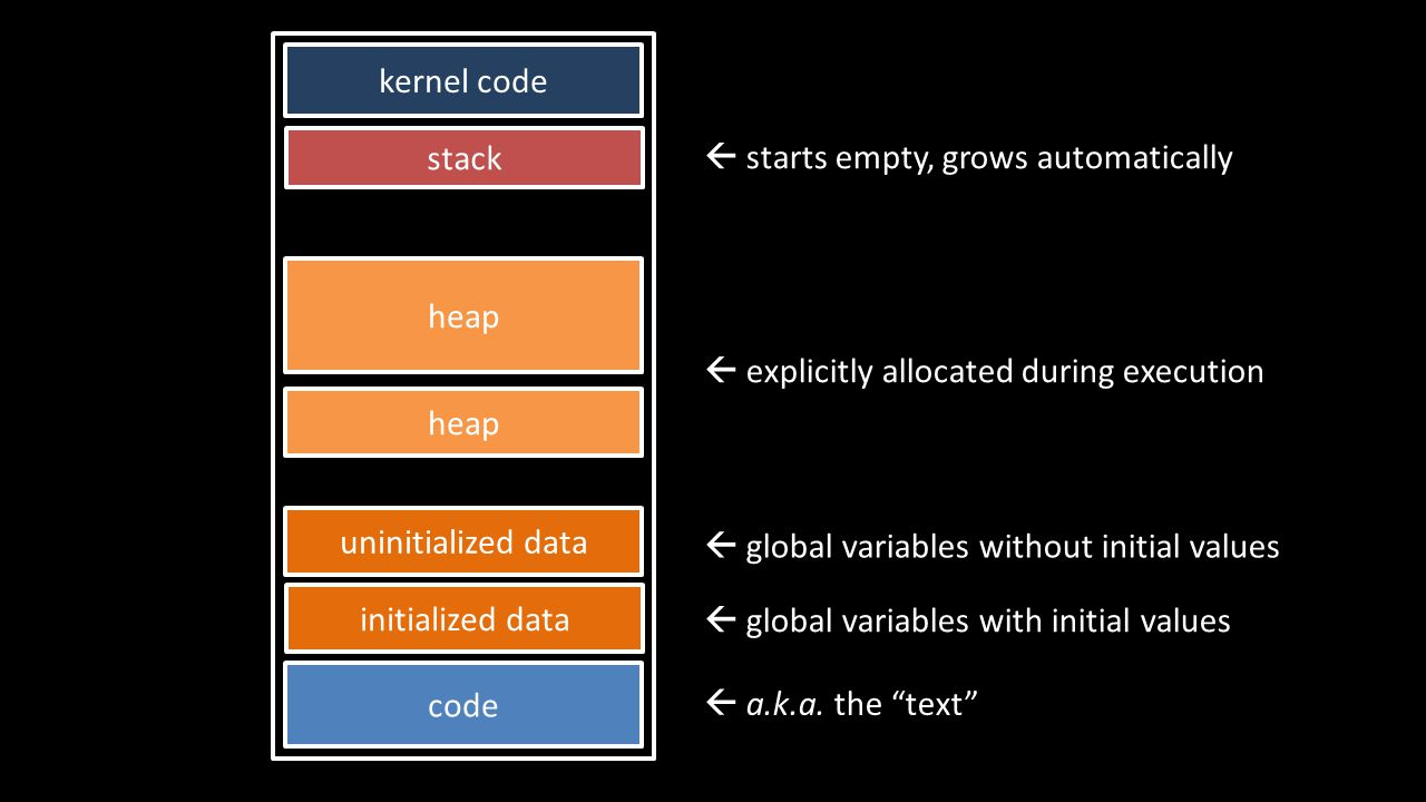 stack code initialized data heap kernel code uninitialized data  a.k.a.