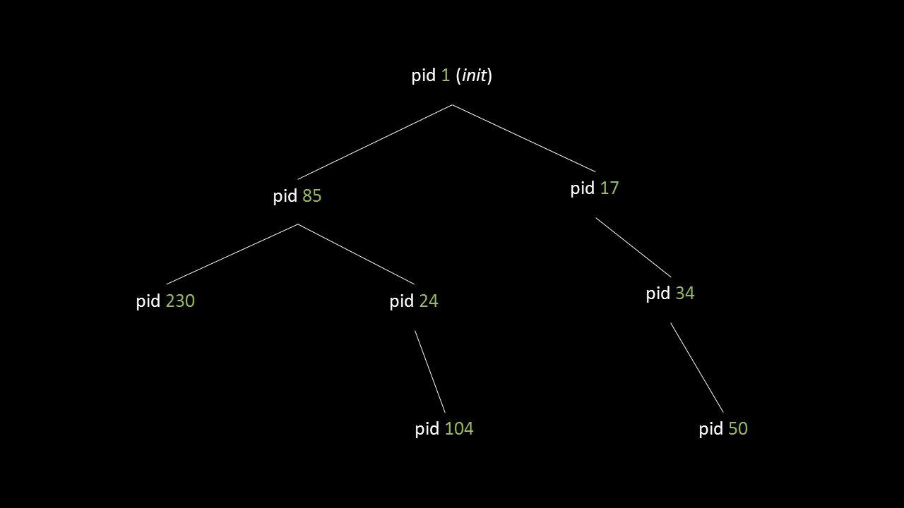 pid 1 (init) pid 85 pid 17 pid 24pid 230 pid 104 pid 34 pid 50