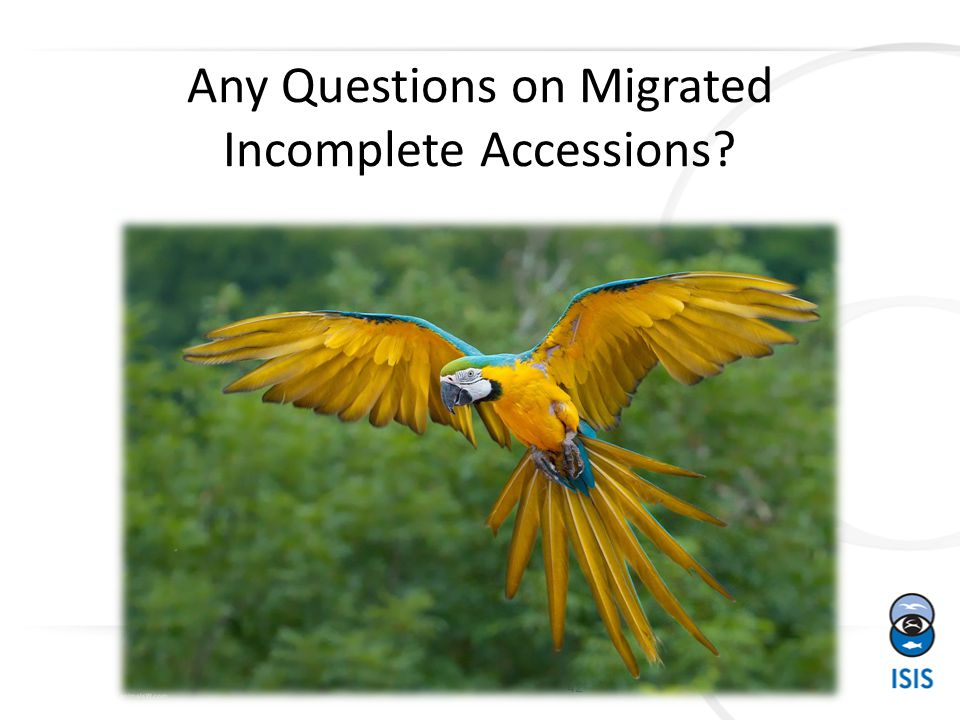 Any Questions on Migrated Incomplete Accessions 42