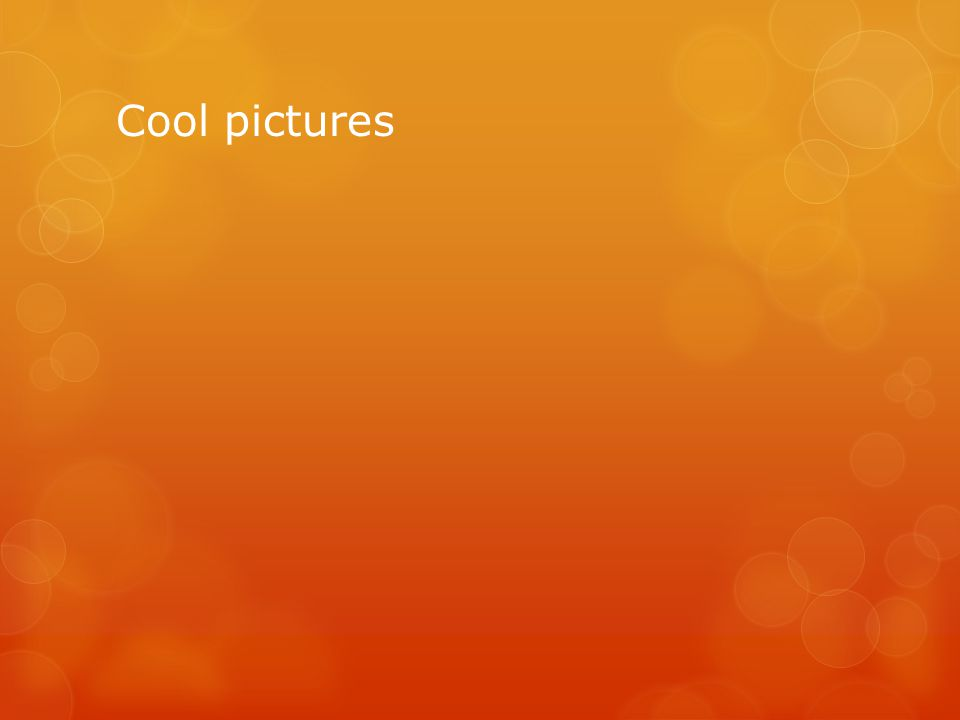 Cool pictures