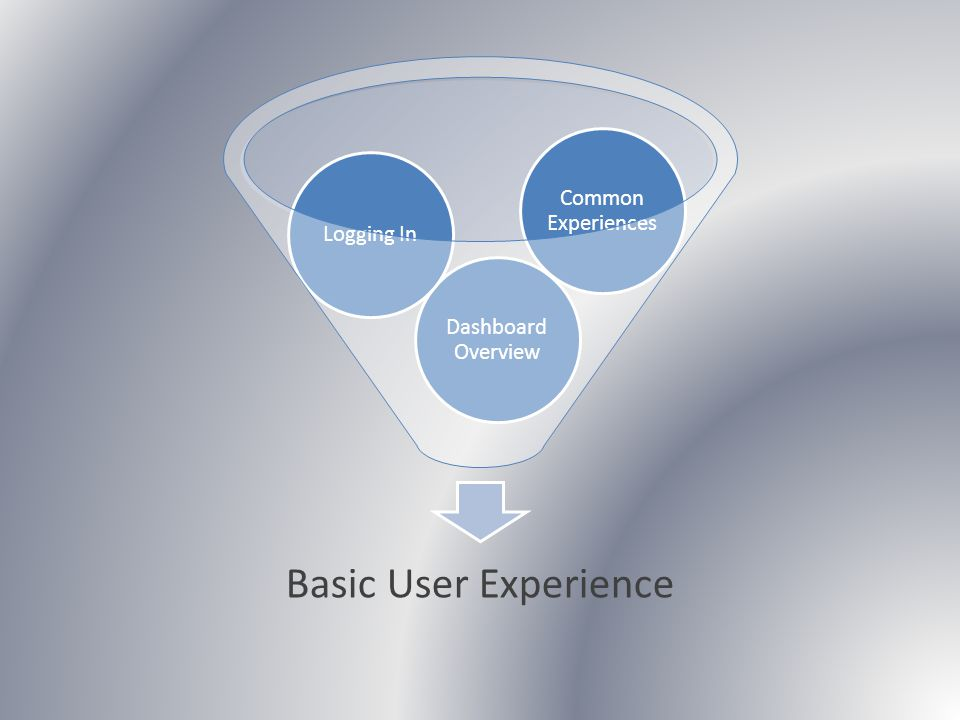 Basic User Experience Dashboard Overview Logging In Common Experiences
