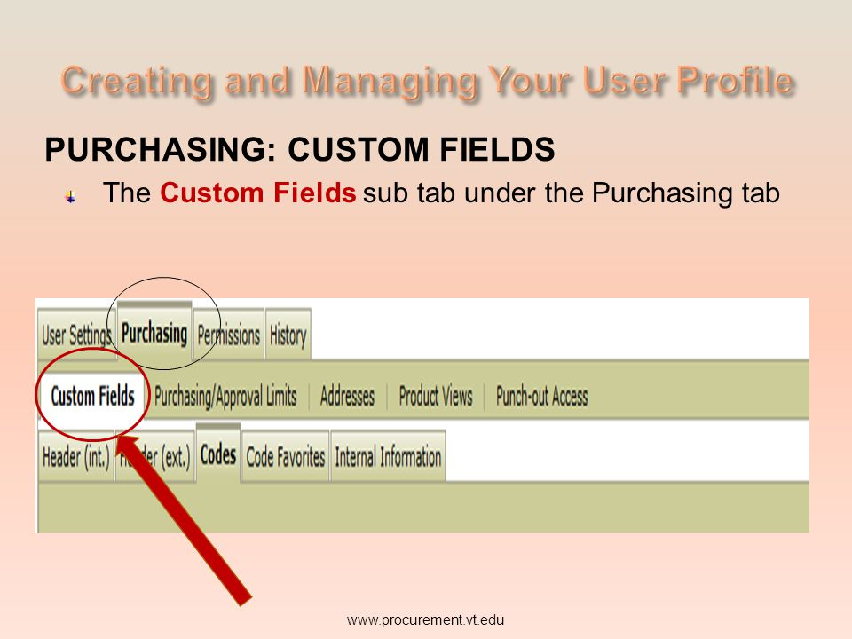 PURCHASING: CUSTOM FIELDS The Custom Fields sub tab under the Purchasing tab www.procurement.vt.edu