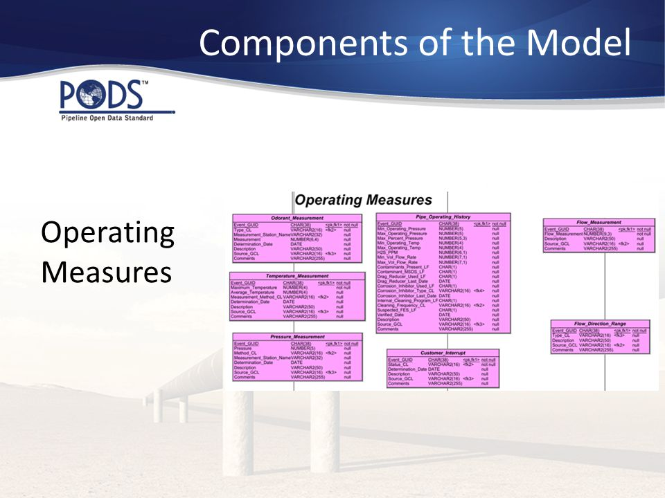Operating Measures Components of the Model