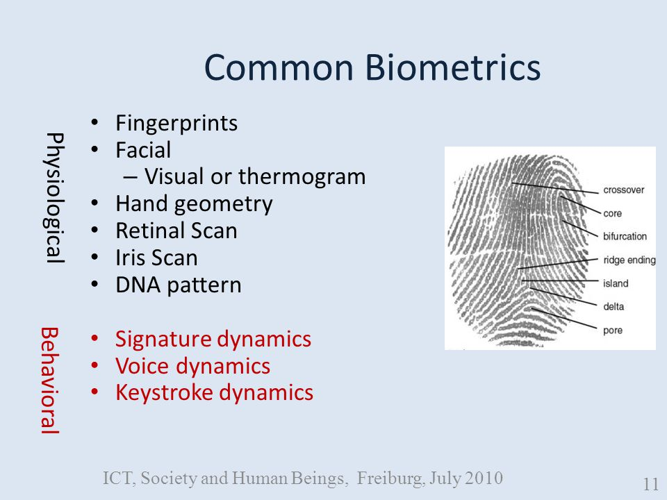 Common Biometrics Fingerprints Facial – Visual or thermogram Hand geometry Retinal Scan Iris Scan DNA pattern Signature dynamics Voice dynamics Keystroke dynamics Physiological Behavioral ICT, Society and Human Beings, Freiburg, July 2010 11