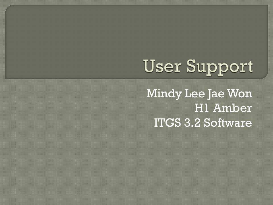 Mindy Lee Jae Won H1 Amber ITGS 3.2 Software