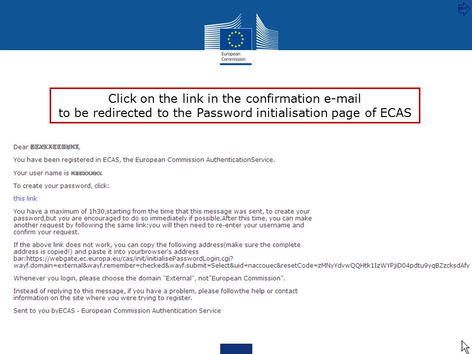 XXXXXXXXXXX xxxxxxxx Click on the link in the confirmation e-mail to be redirected to the Password initialisation page of ECAS NEXT