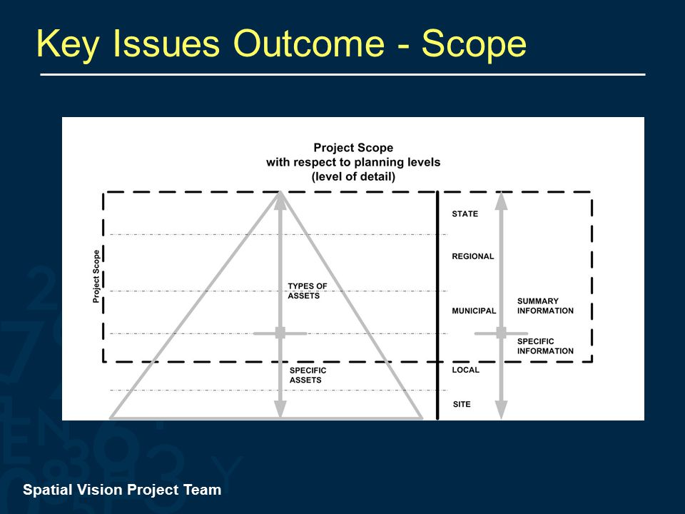 Spatial Vision Project Team Key Issues Outcome - Scope