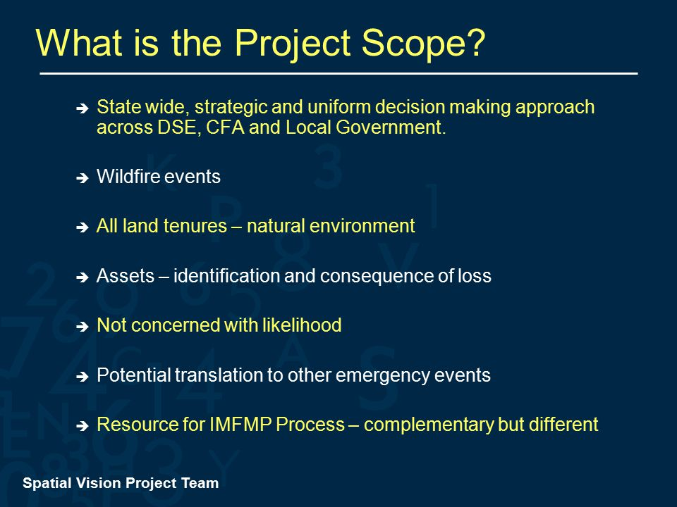 Spatial Vision Project Team What is the Project Scope.