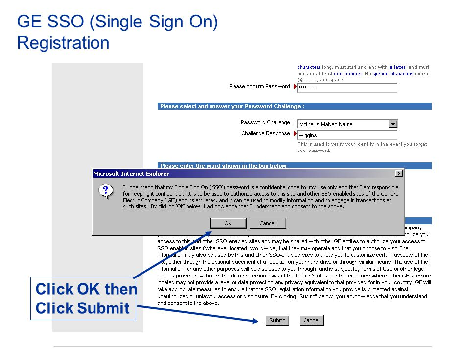 GE SSO (Single Sign On) Registration Click Continue