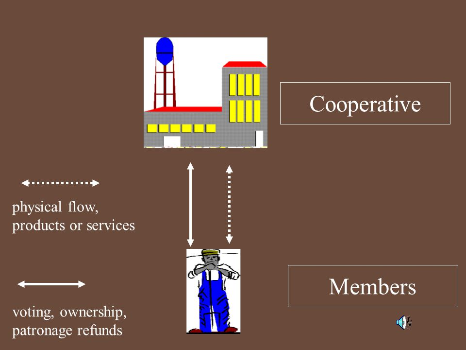Members Cooperative voting, ownership, patronage refunds physical flow, products or services