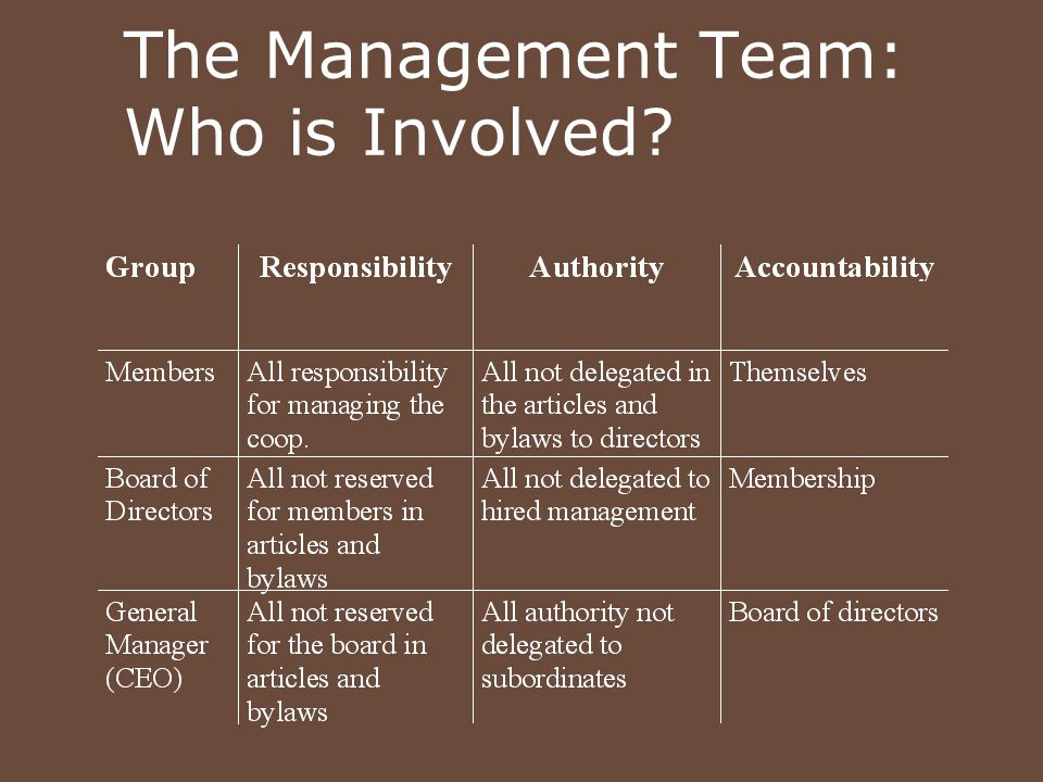 The Management Team: Who is Involved?