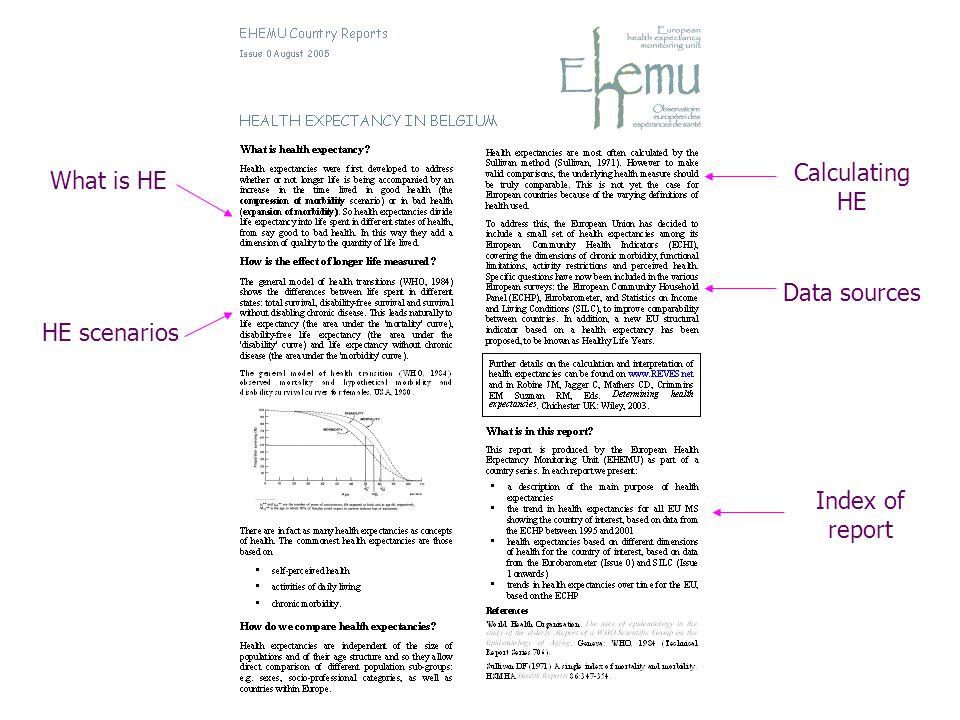 What is HE HE scenarios Calculating HE Data sources Index of report