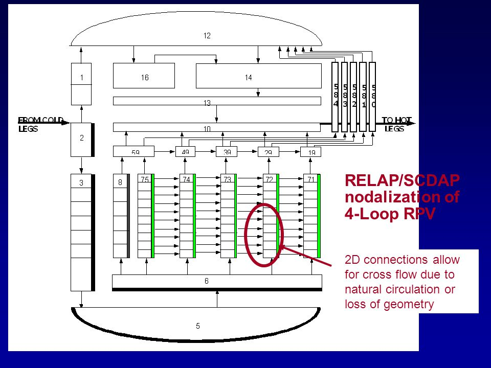 RELAP/SCDAP nodalization of 4-Loop RPV 2D connections allow for cross flow due to natural circulation or loss of geometry