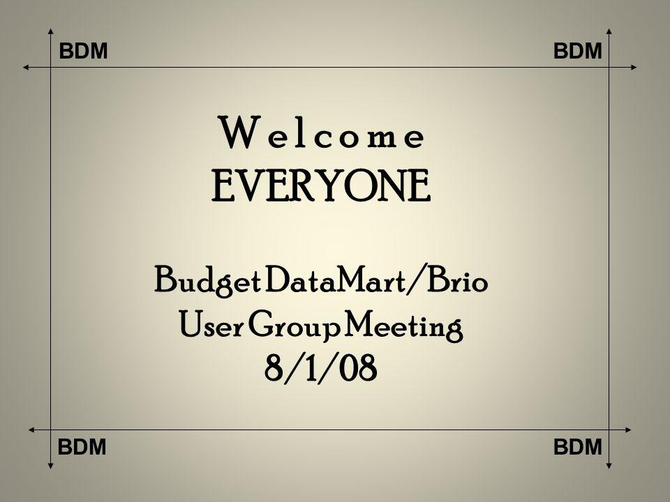 BDM W e l c o m e EVERYONE Budget DataMart/Brio User Group Meeting 8/1/08