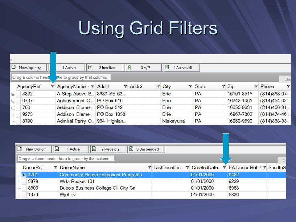 Using Grid Filters