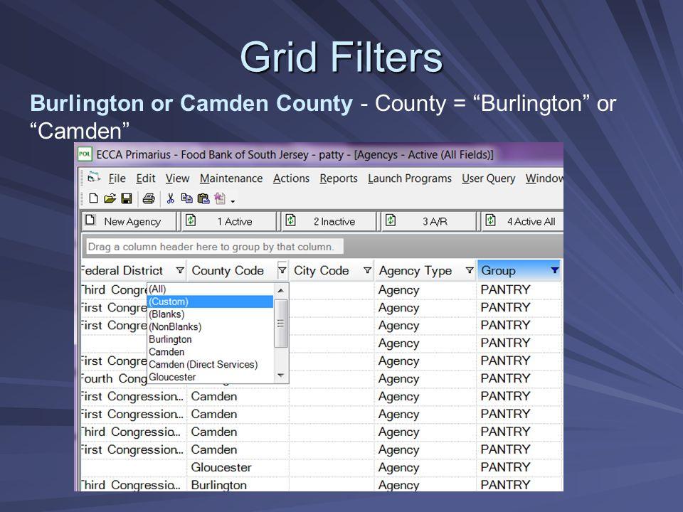 Grid Filters Burlington or Camden County - County = Burlington or Camden