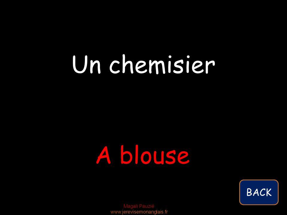 Magali Pauzié www.jerevisemonanglais.fr A blouse Un chemisier BACK