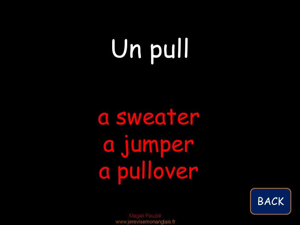 Magali Pauzié www.jerevisemonanglais.fr a sweater a jumper a pullover Un pull BACK