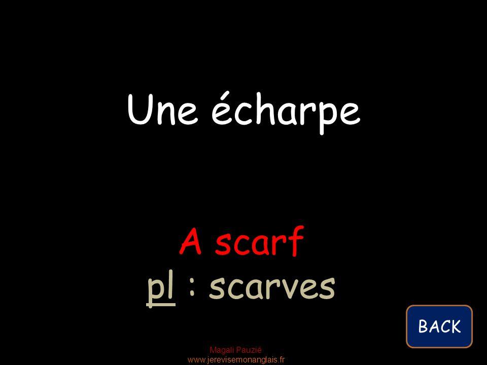 Magali Pauzié www.jerevisemonanglais.fr A scarf pl : scarves Une écharpe BACK