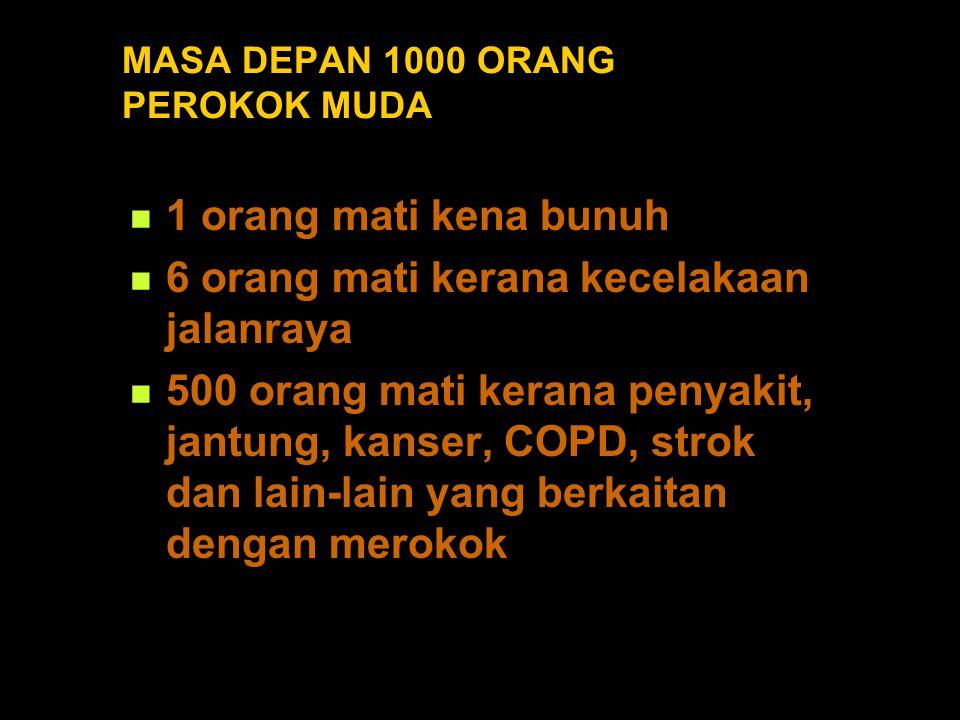 MASA DEPAN 1000 ORANG PEROKOK MUDA 1 orang mati kena bunuh 6 orang mati kerana kecelakaan jalanraya 500 orang mati kerana penyakit, jantung, kanser, COPD, strok dan lain-lain yang berkaitan dengan merokok