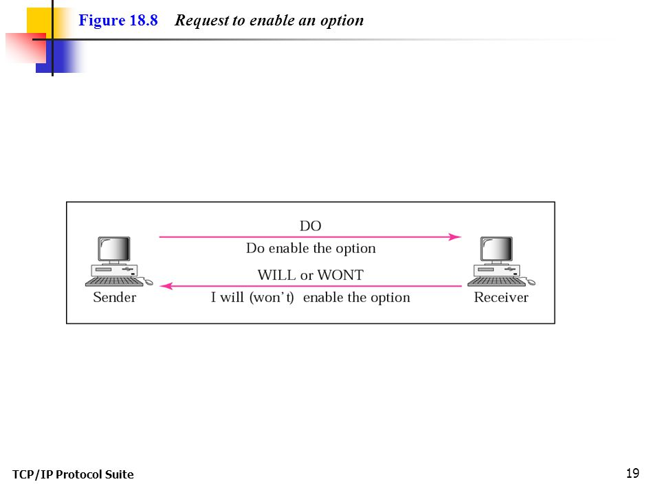 TCP/IP Protocol Suite 19 Figure 18.8 Request to enable an option