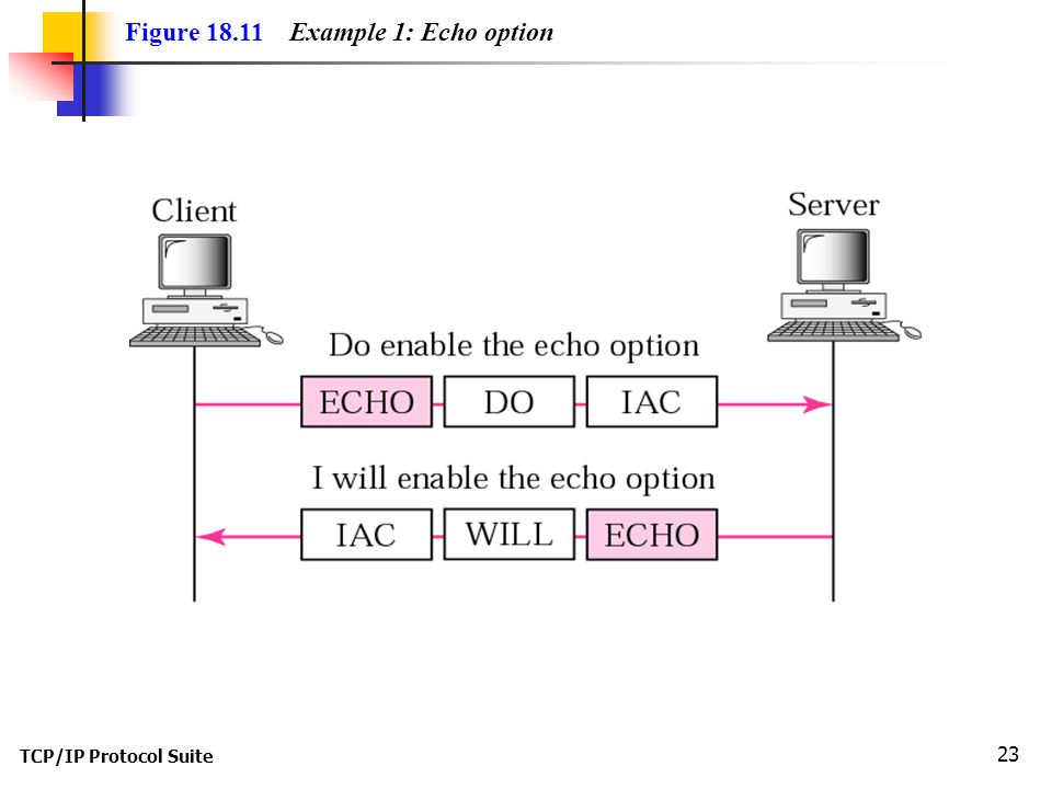 TCP/IP Protocol Suite 23 Figure 18.11 Example 1: Echo option