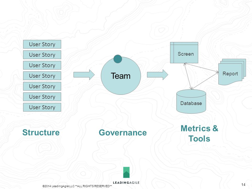 Team Database Report Screen User Story Governance Metrics & Tools Structure ©2014 LeadingAgile LLC **ALL RIGHTS RESERVED** 14