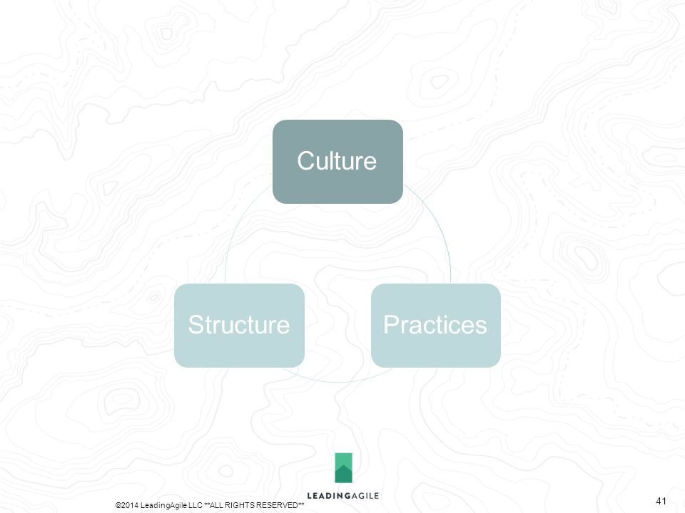 CulturePracticesStructure ©2014 LeadingAgile LLC **ALL RIGHTS RESERVED** 41