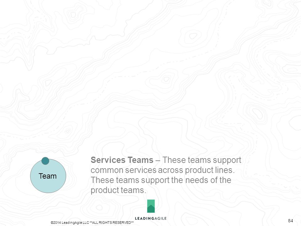 Services Teams – These teams support common services across product lines.