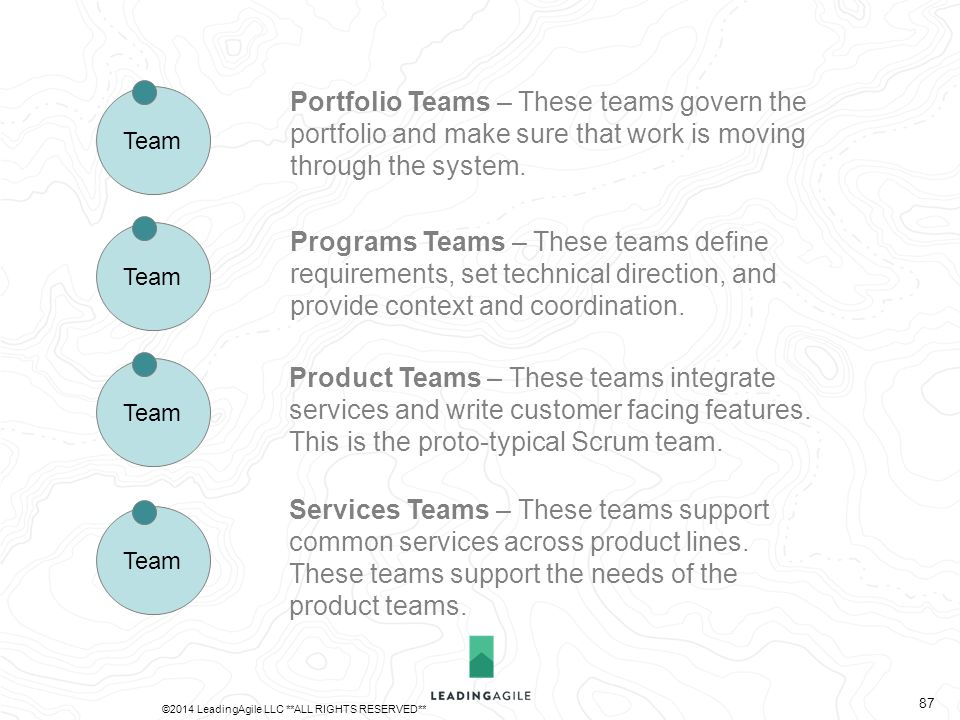 Services Teams – These teams support common services across product lines. These teams support the needs of the product teams. Team Portfolio Teams –