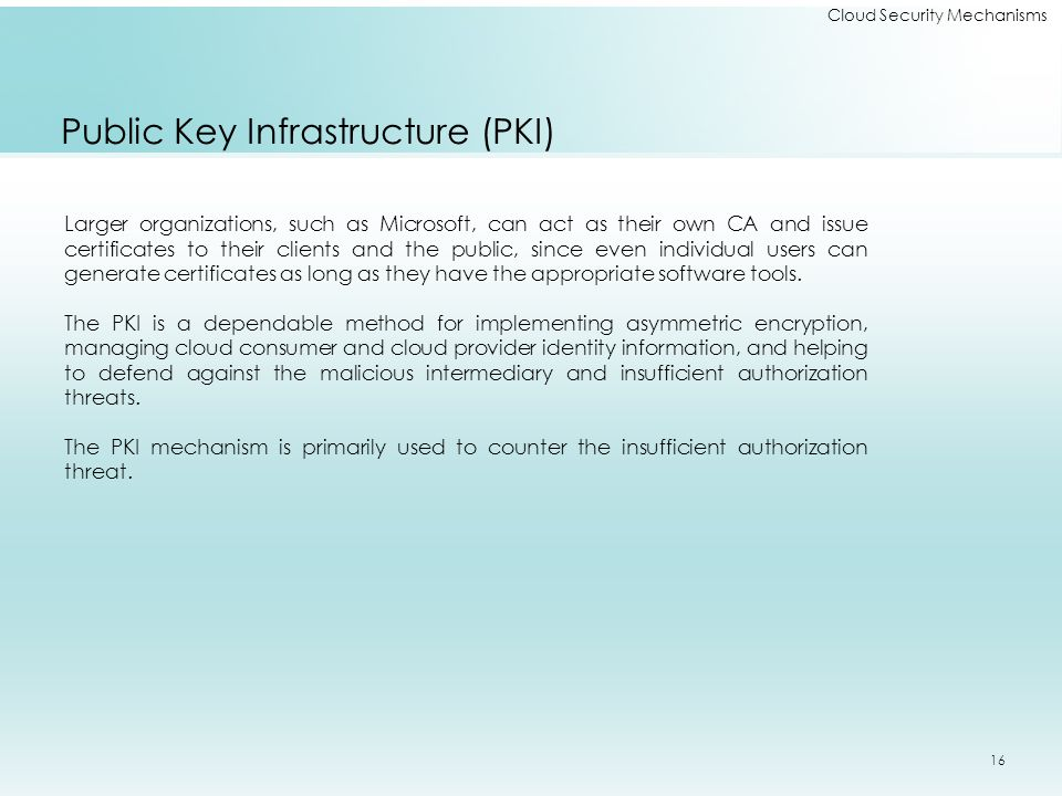 Cloud Security Mechanisms Public Key Infrastructure (PKI) Larger organizations, such as Microsoft, can act as their own CA and issue certificates to their clients and the public, since even individual users can generate certificates as long as they have the appropriate software tools.