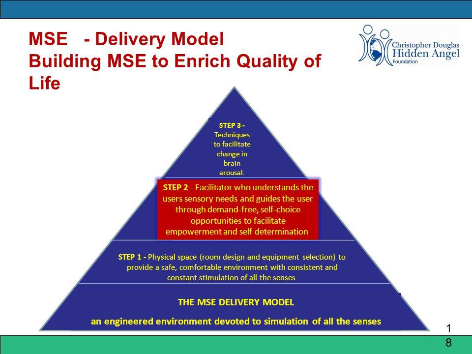 MSE - Delivery Model Building MSE to Enrich Quality of Life 1818 STEP 3 - Techniques to facilitate change in brain arousal.
