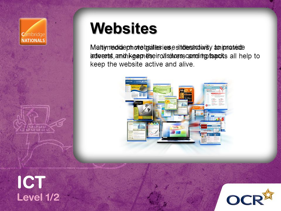 Many modern websites use interactivity to provide interest and keep their visitors coming back.