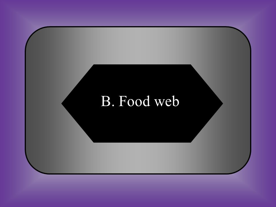 A:B: Food webFood chain C:D: ecologyFood chart #14 A diagram that consists of many overlapping food chains