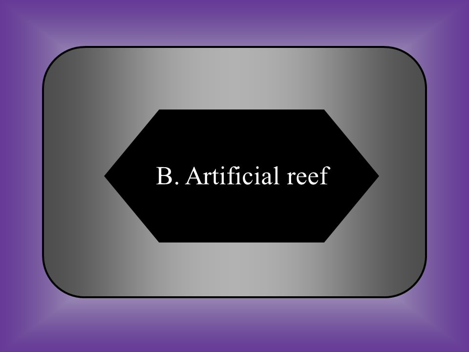 A:B: Barrier reefArtificial reef C:D: Marine reefNone of these #29 a human-made underwater structure, built to increase marine life.