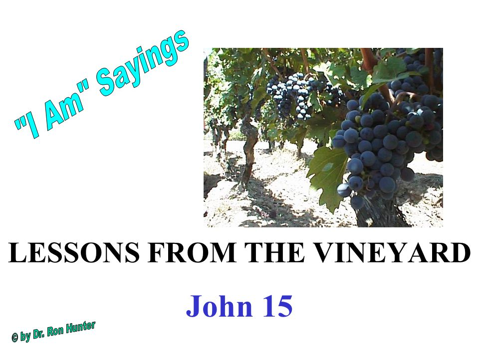 LESSONS FROM THE VINEYARD John 15