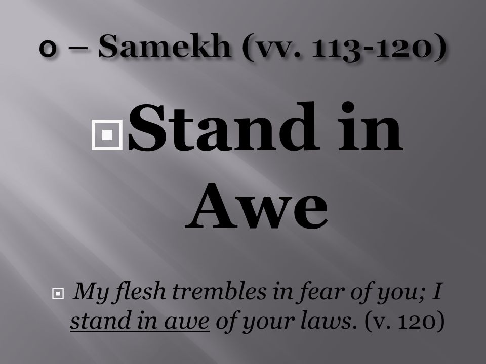  Stand in Awe  My flesh trembles in fear of you; I stand in awe of your laws. (v. 120)