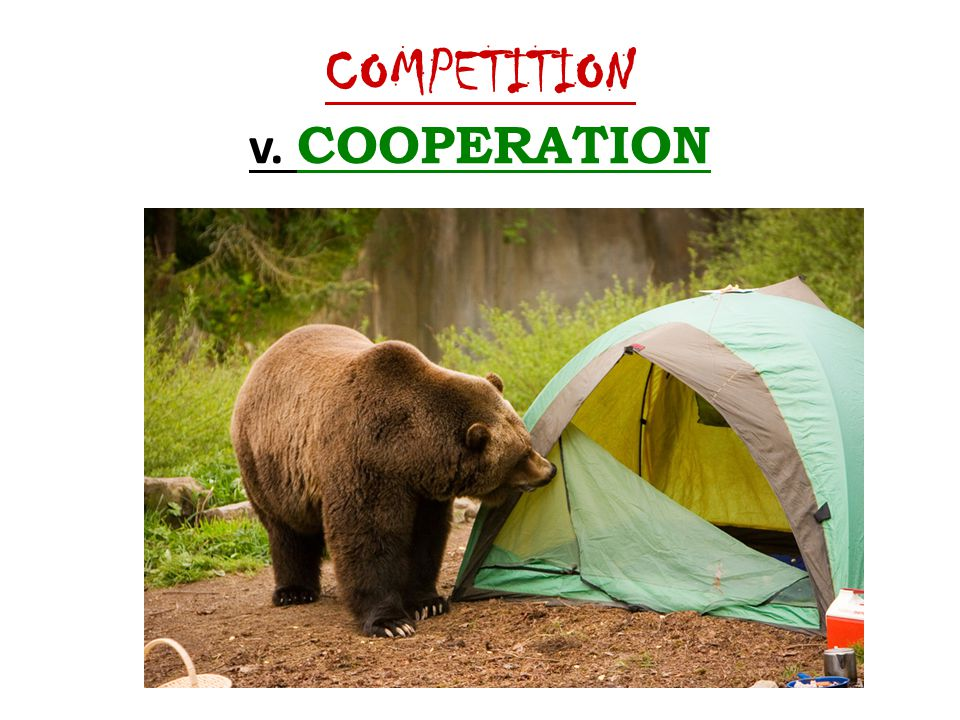 COMPETITION v. COOPERATION